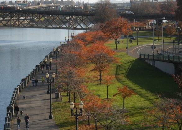 a fall scene along the river in Portland Oregon